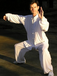 Anthony Fidler - Chen Tai Chi Single Whip